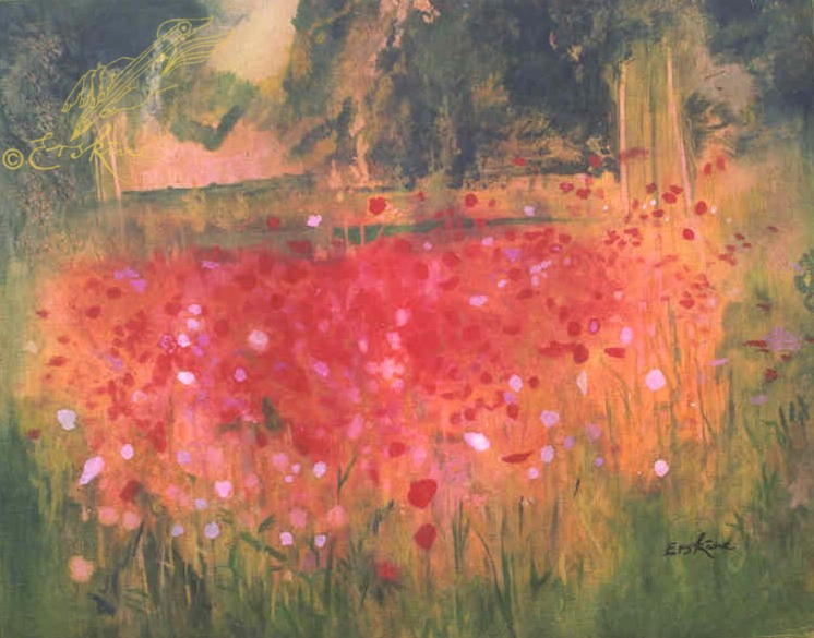Poppy field, Texel